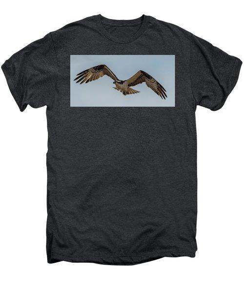 Osprey Flying Men's Premium T-Shirt by Paul Freidlund