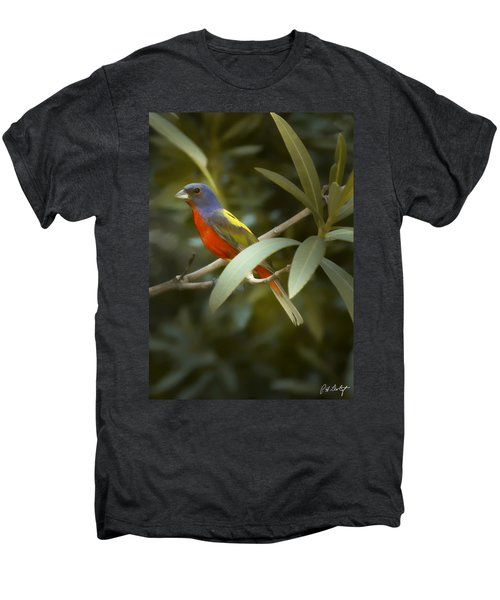 Painted Bunting Male Men's Premium T-Shirt by Phill Doherty