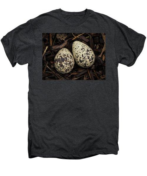 Speckled Killdeer Eggs By Jean Noren Men's Premium T-Shirt by Jean Noren