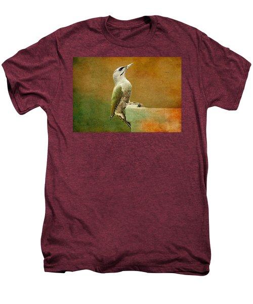 Grey-headed Woodpecker Men's Premium T-Shirt by Heike Hultsch