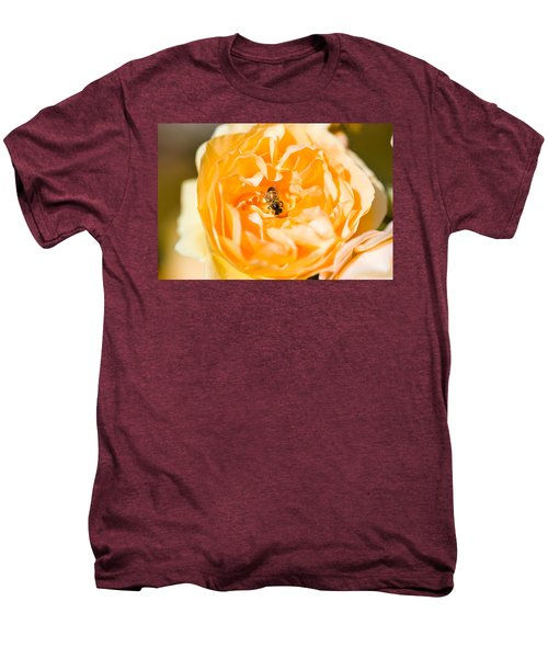 Bee Pollinating A Yellow Rose, Beverly Men's Premium T-Shirt by Panoramic Images