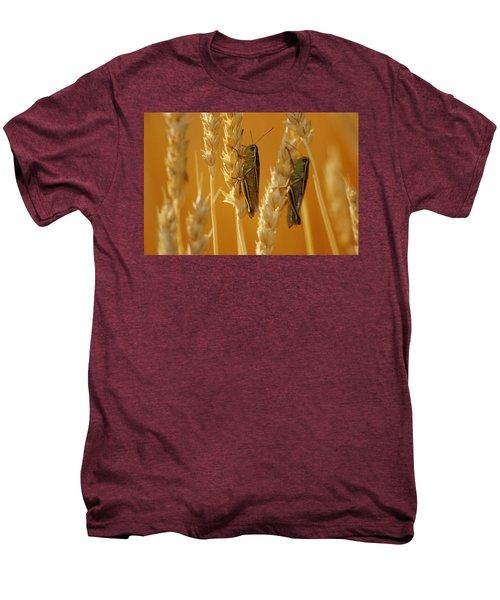 Grasshoppers On Wheat, Treherne Men's Premium T-Shirt by Mike Grandmailson