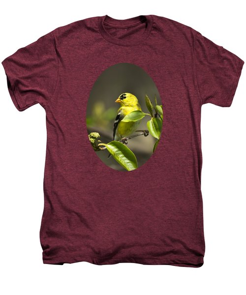 American Goldfinch On Branch Men's Premium T-Shirt by Christina Rollo