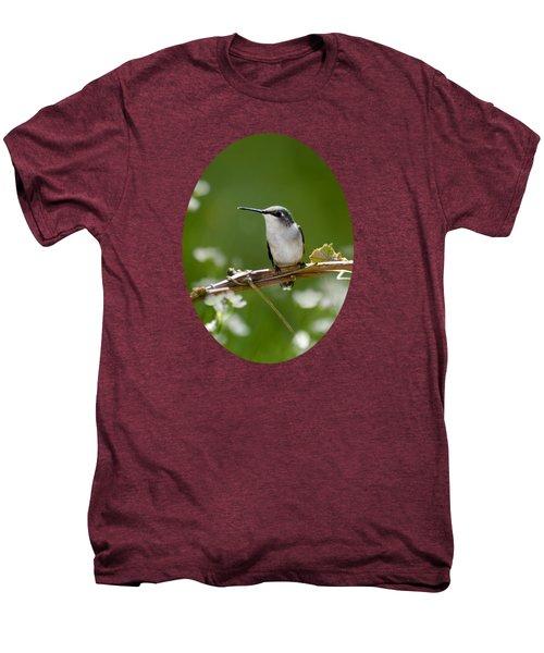 Meadow Hummingbird Men's Premium T-Shirt by Christina Rollo