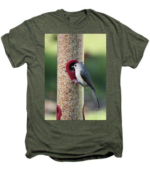 Eastern Tufted Titmouse  Men's Premium T-Shirt by Carol Groenen