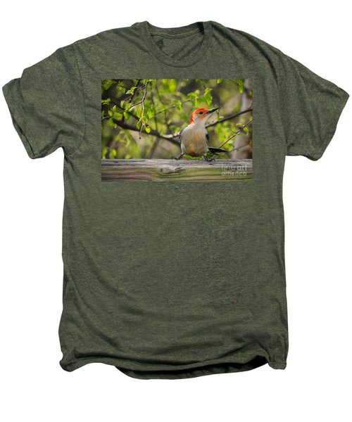 Which Way Did They Go Men's Premium T-Shirt by Lois Bryan