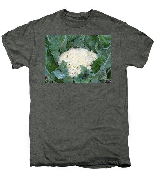 Cauliflower Men's Premium T-Shirt by Carol Groenen