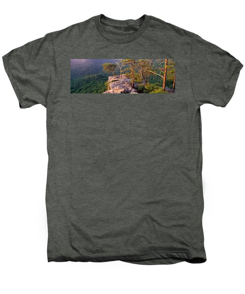 Trees On A Mountain, Buzzards Roost Men's Premium T-Shirt by Panoramic Images