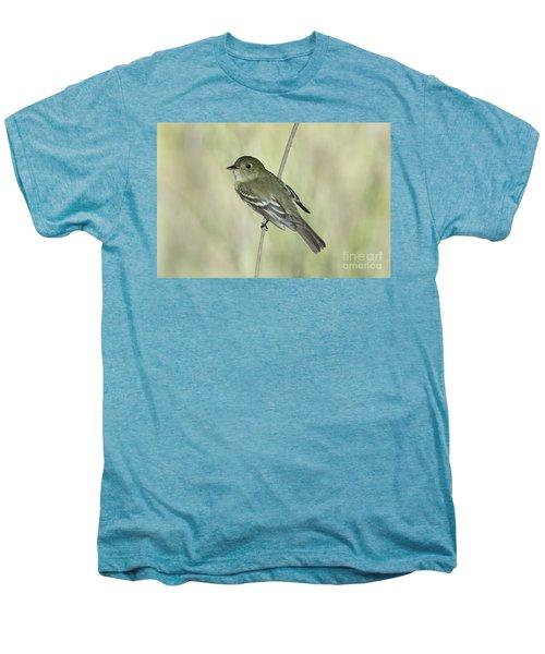 Acadian Flycatcher Men's Premium T-Shirt by Anthony Mercieca