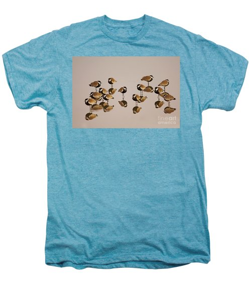 Spur-winged Lapwing Vanellus Spinosus Men's Premium T-Shirt by Eyal Bartov