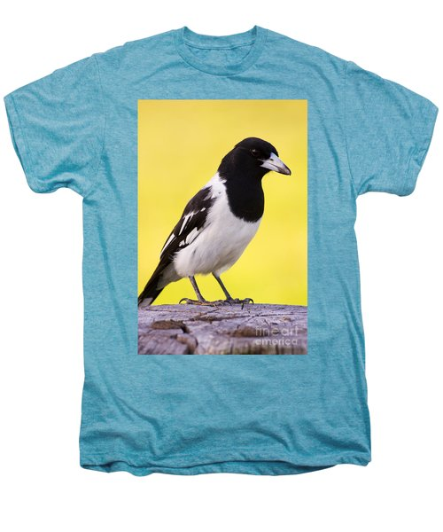 Fencepost Magpie Men's Premium T-Shirt by Jorgo Photography - Wall Art Gallery