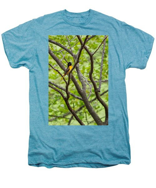 Baltimore Oriole Men's Premium T-Shirt by Bill Wakeley