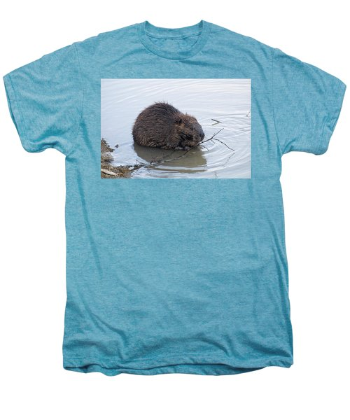 Beaver Chewing On Twig Men's Premium T-Shirt by Chris Flees