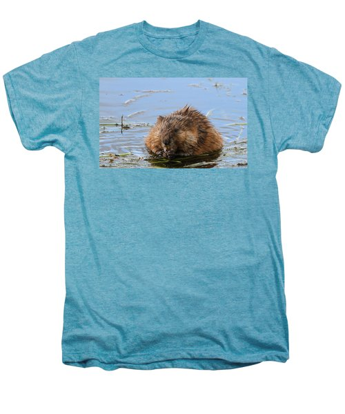Beaver Portrait Men's Premium T-Shirt by Dan Sproul