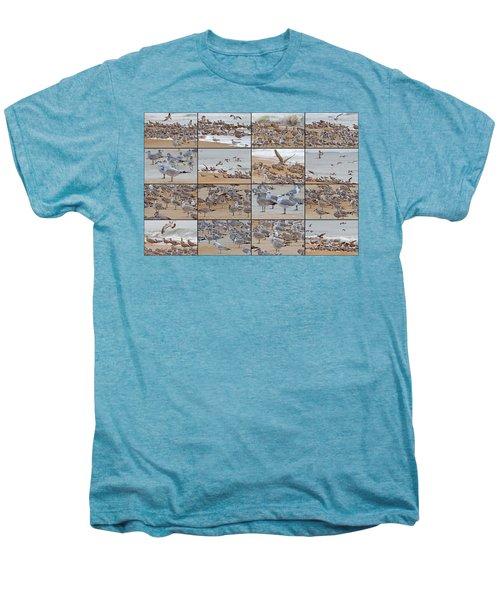 Birds Of Many Feathers Men's Premium T-Shirt by Betsy Knapp
