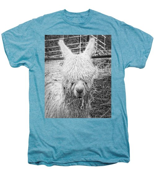Black And White Alpaca Photograph Men's Premium T-Shirt by Keith Webber Jr