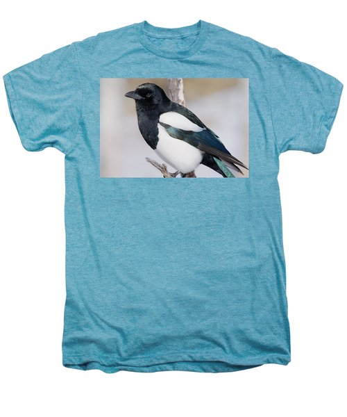 Black-billed Magpie Men's Premium T-Shirt by Eric Glaser