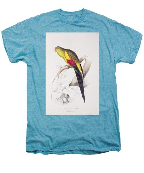 Black Tailed Parakeet Men's Premium T-Shirt by Edward Lear