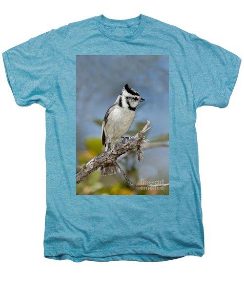 Bridled Titmouse Men's Premium T-Shirt by Anthony Mercieca