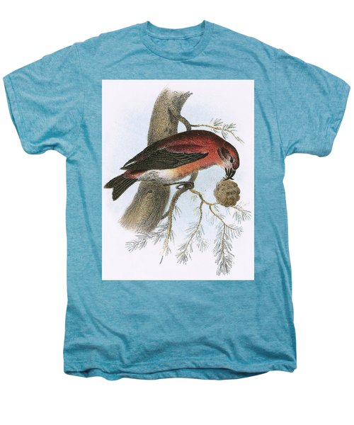 Crossbill Men's Premium T-Shirt by English School