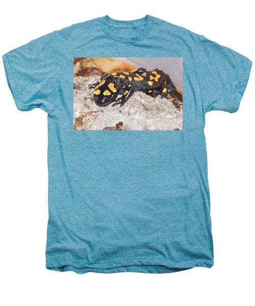 Fire Salamander Salamandra Salamandra Men's Premium T-Shirt by Shay Levy
