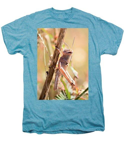Grasshopper In The Marsh Men's Premium T-Shirt by Carol Groenen