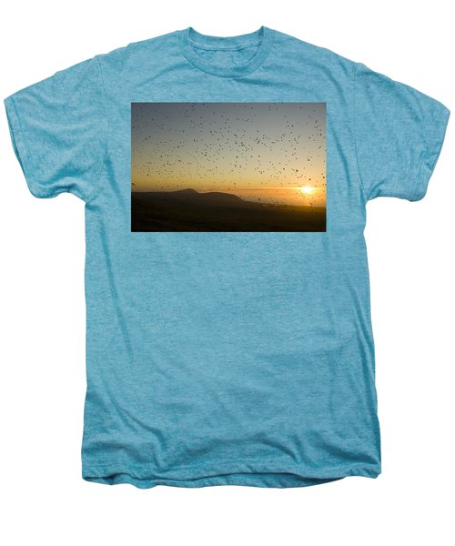 Least Auklets, Returning To Their Nest Men's Premium T-Shirt by Brian Guzzetti