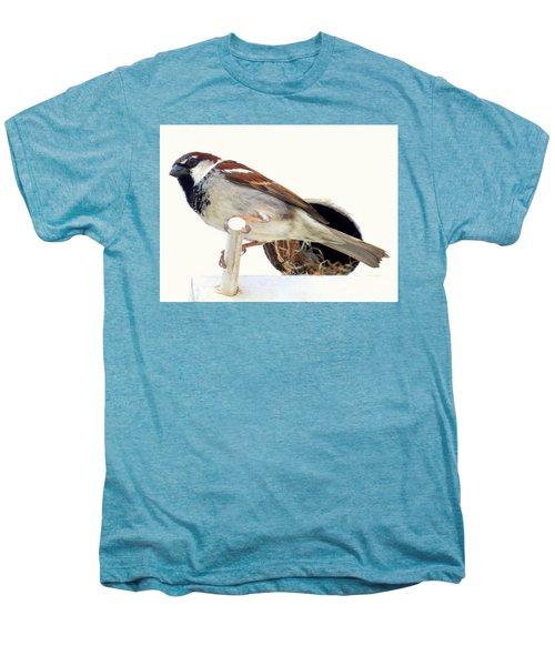 Little Sparrow Men's Premium T-Shirt by Karen Wiles