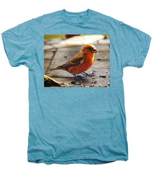 Look - I'm A Crossbill Men's Premium T-Shirt by Robert L Jackson