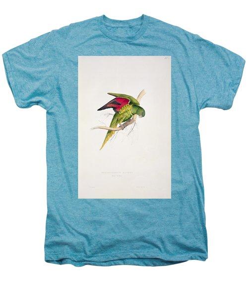 Matons Parakeet Men's Premium T-Shirt by Edward Lear