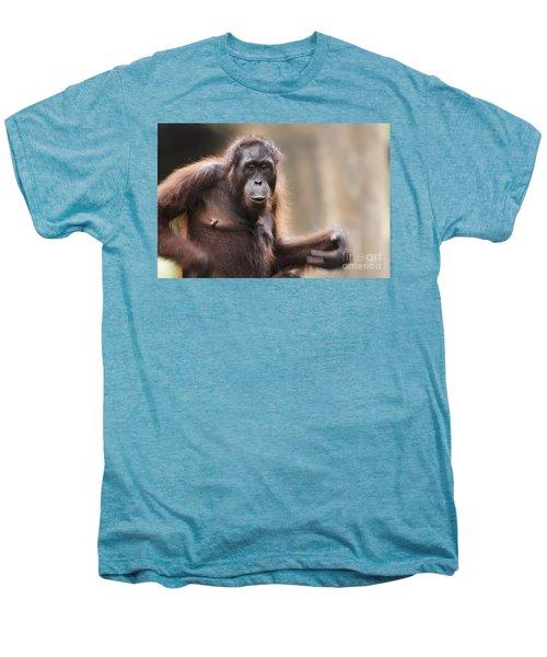 Orangutan Men's Premium T-Shirt by Richard Garvey-Williams