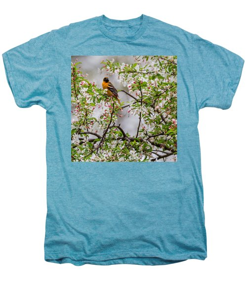 Oriole In Crabapple Tree Square Men's Premium T-Shirt by Bill Wakeley