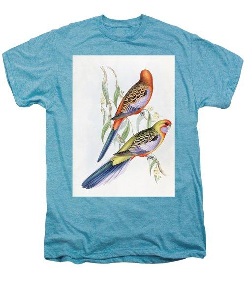 Platycercus Adelaidae From The Birds Of Australia Men's Premium T-Shirt by John Gould
