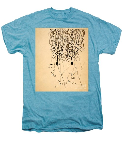 Purkinje Cells By Cajal 1899 Men's Premium T-Shirt by Science Source