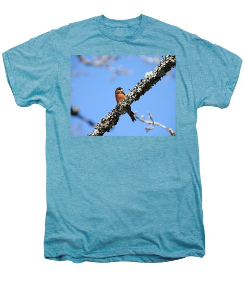 Red Crossbill Finch Men's Premium T-Shirt by Marilyn Wilson