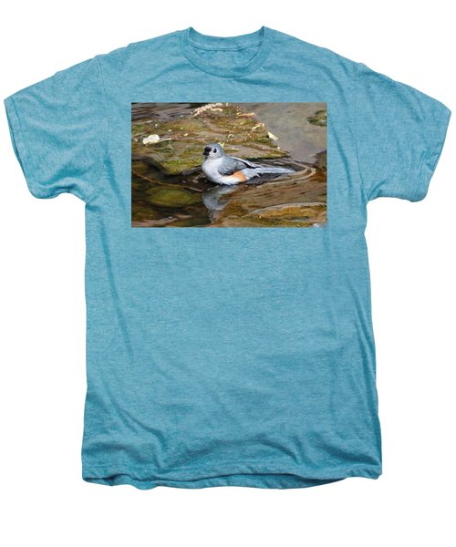 Tufted Titmouse In Pond Men's Premium T-Shirt by Sandy Keeton