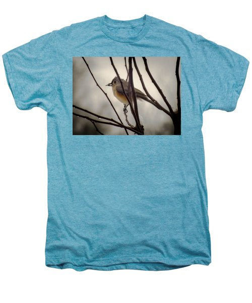 Tufted Titmouse Men's Premium T-Shirt by Karen Wiles