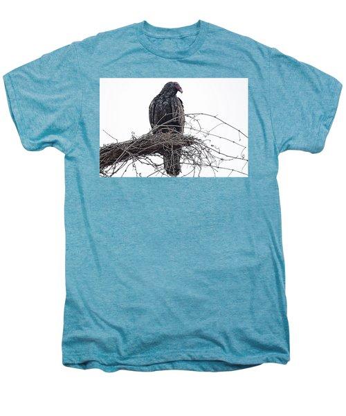 Turkey Vulture Men's Premium T-Shirt by Douglas Barnard