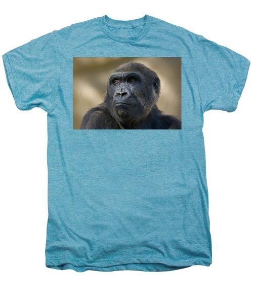 Western Lowland Gorilla Portrait Men's Premium T-Shirt by San Diego Zoo