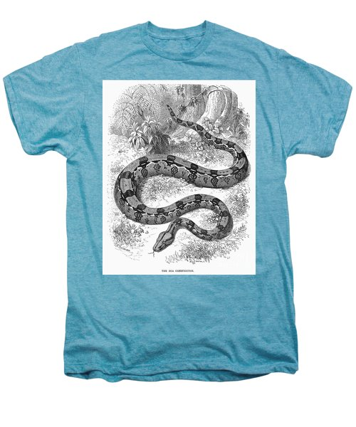 Boa Constrictor Men's Premium T-Shirt by Granger