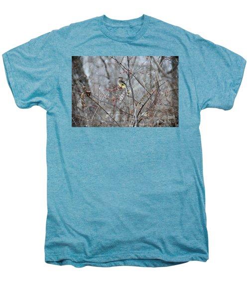 Cedar Wax Wing 3 Men's Premium T-Shirt by David Arment