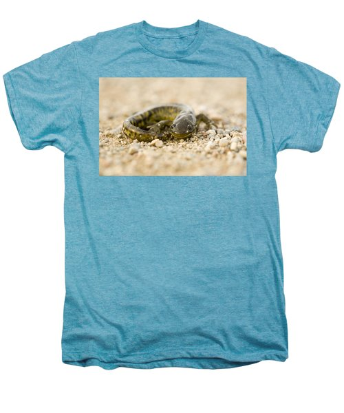Close Up Tiger Salamander Men's Premium T-Shirt by Mark Duffy