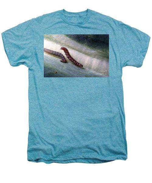 Diamondback Moth Larvae Men's Premium T-Shirt by Science Source