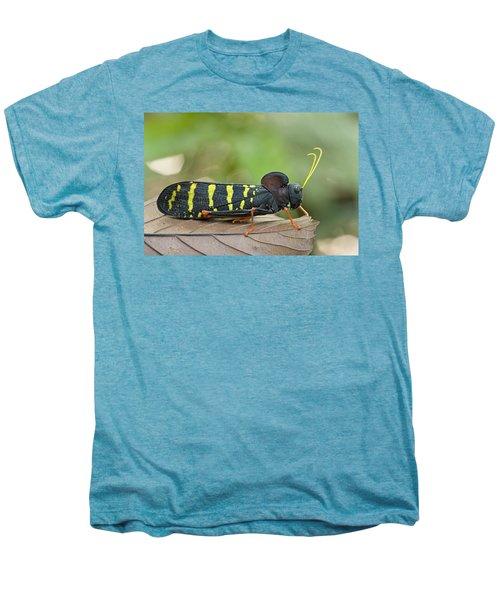 Lubber Grasshopper Guyana Men's Premium T-Shirt by Piotr Naskrecki