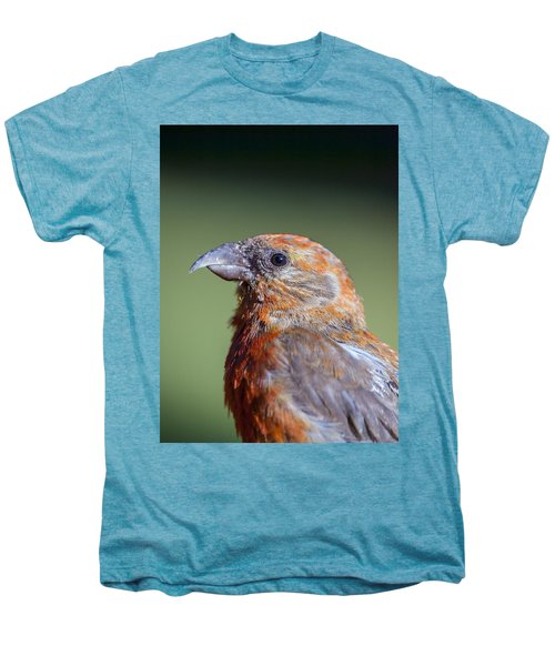 Red Crossbill Men's Premium T-Shirt by Derek Holzapfel