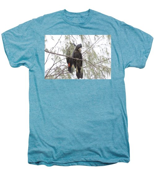 Red Tailed Black Cockatoos Men's Premium T-Shirt by Douglas Barnard