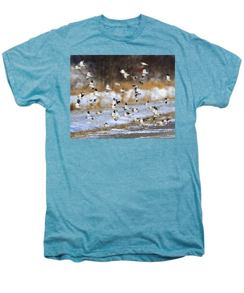 Snow Buntings Men's Premium T-Shirt by Tony Beck