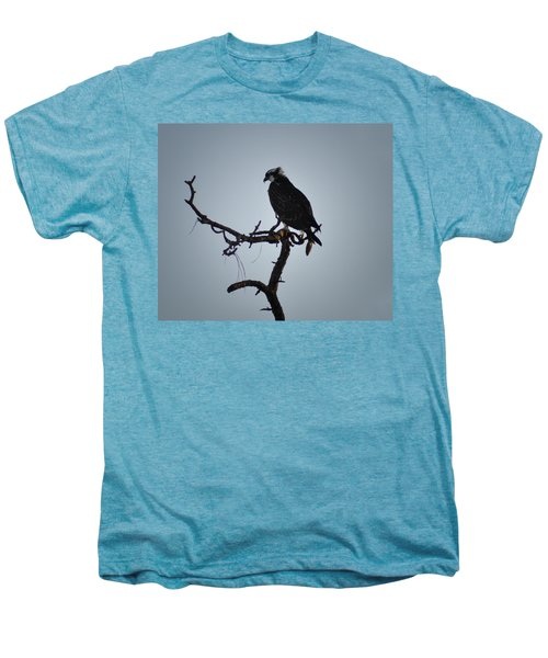 The Osprey Men's Premium T-Shirt by Bill Cannon