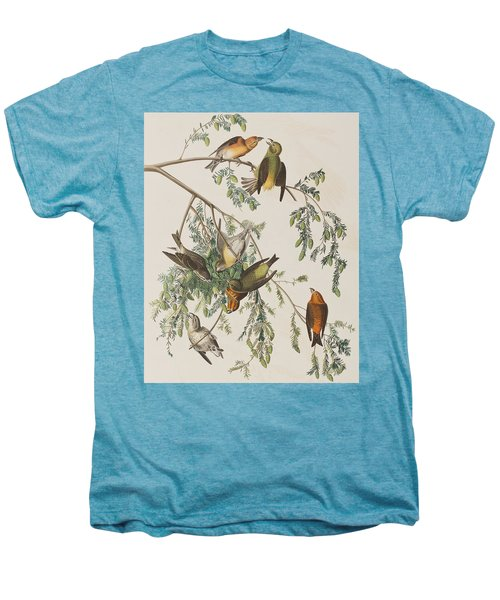 American Crossbill Men's Premium T-Shirt by John James Audubon