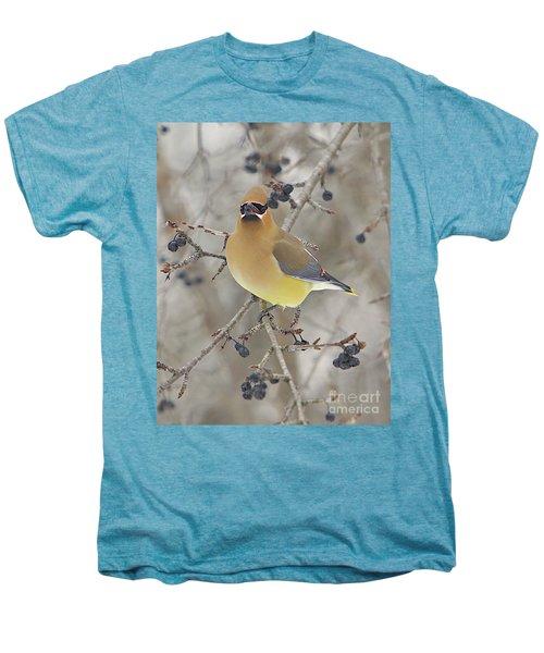 Cedar Wax Wing Men's Premium T-Shirt by Robert Pearson